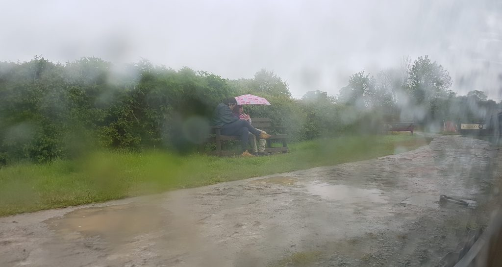 Daw and CC in the rain